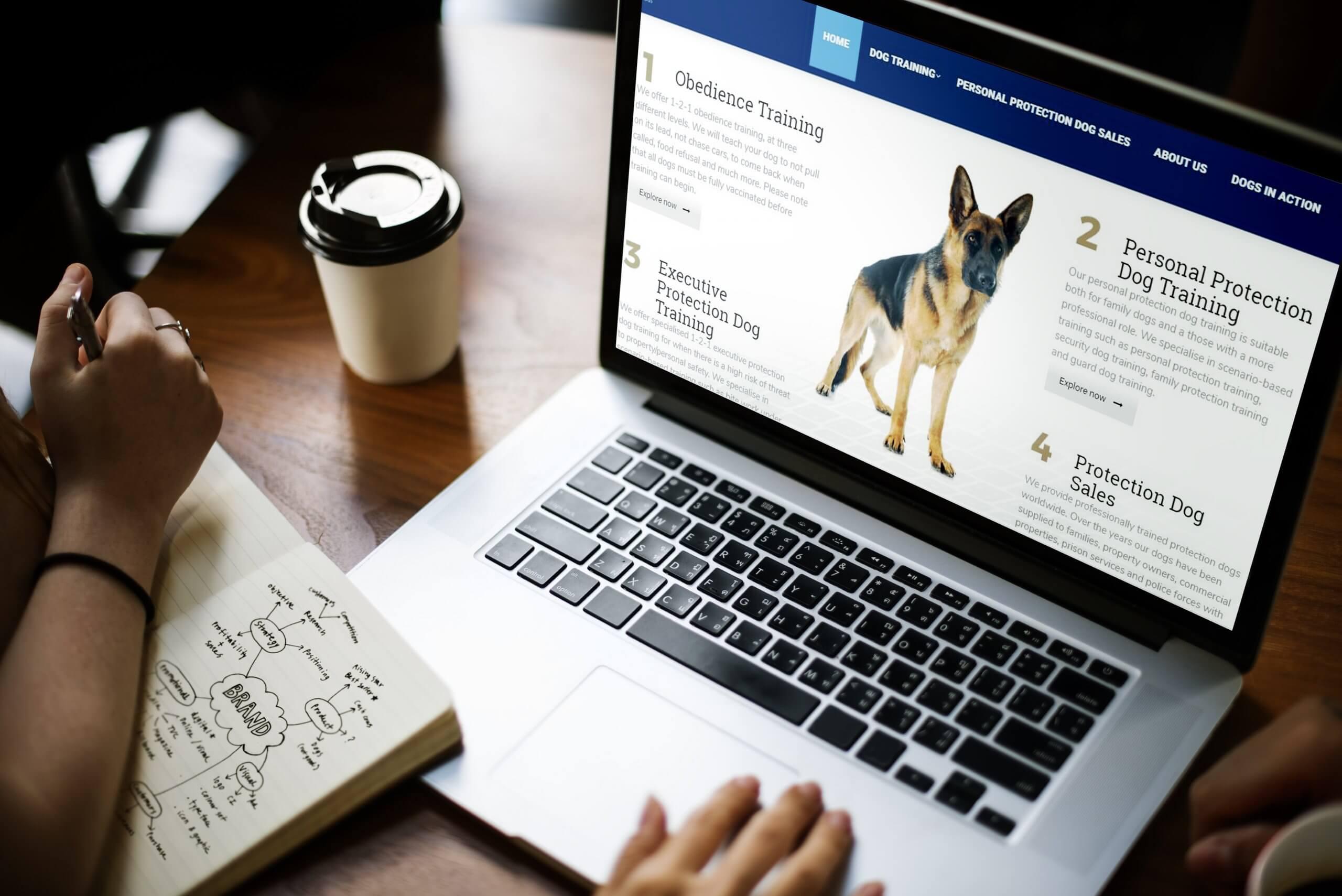 Marketing Case Studies   Web Design Bradford 1